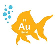 Periodic Table Elemental Gold Fish Photographic Print