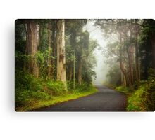 Foggy Road... Canvas Print
