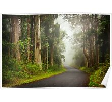 Foggy Road... Poster