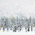 Winter Forest Snowfall by Andrew Bret Wallis