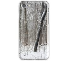 #42 iPhone Case/Skin