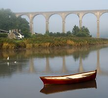 Calstock, Viaduct over the Tamar by mikebov
