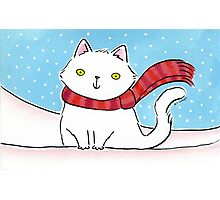White Cat in the Snow Photographic Print