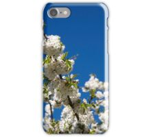 Full Bloom iPhone Case/Skin