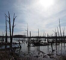 Dark of the Swamp by DevinStar