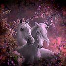Blossom Palette by Igor Zenin