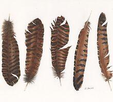 Pheasant roadkill by LindaCamac