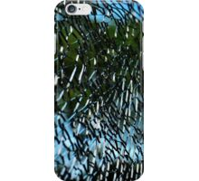 Cracked Case iPhone Case/Skin
