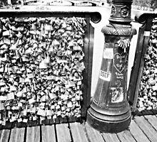 Black and White Locks of Love by yeinamv