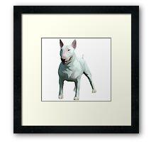 bull terrier spud mackenzie Framed Print