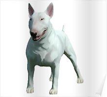 bull terrier spud mackenzie Poster