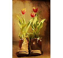 Tulips in Boots Photographic Print