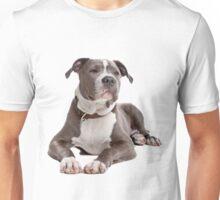 staffordshire terrier blue Unisex T-Shirt