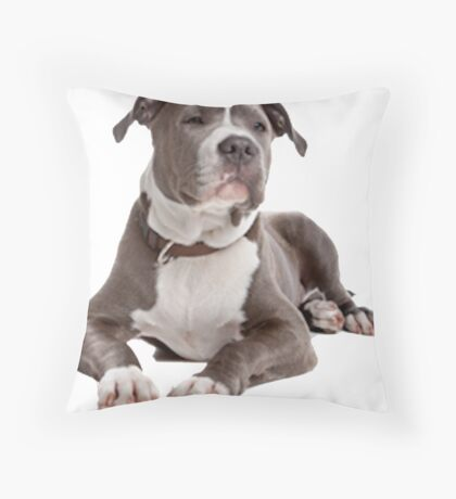 staffordshire terrier blue Throw Pillow
