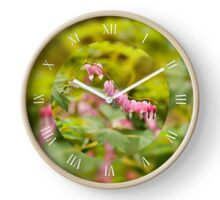 Lamprocapnos spectabilis heart flowers Clock