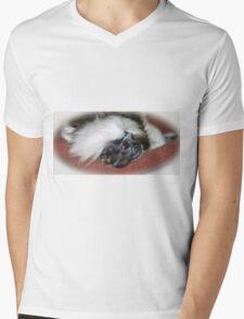 Cotton-top Tamarin Mens V-Neck T-Shirt