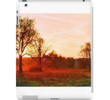 DEER AT SUNSET iPad Case/Skin