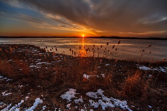 Sun sets on Plum Island by Owed to Nature