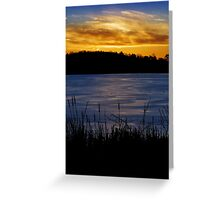 Winter cattail's golden view Greeting Card