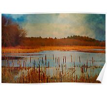 Great Meadows painted with cattails Poster