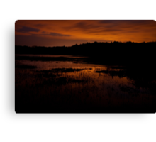 Edge of nightfall – Great Meadows series Canvas Print