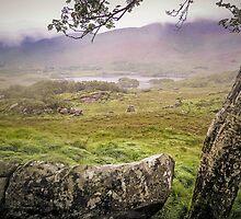 Mist Killarney Ladies View - Ireland by TonyCrehan