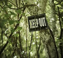 Keep Out Island by Trish Mistric