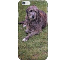 Faithful Hounds iPhone Case/Skin