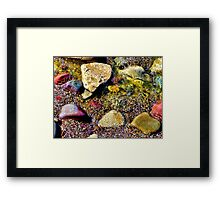 The Yellow Rock Framed Print