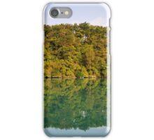 Autumn along the Rhone river iPhone Case/Skin