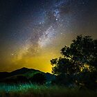 Milky Way over a tree in Gaviota by Brian Haidet