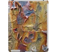 Paper Bark Abstract iPad Case/Skin