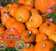 ╭∩╮( º.º )╭∩╮Ontario Pumpkins & Pumpkin Carriage ~ Raising Awareness-PILLOWS-TOTE BAGS,JOURNALS ECT.. ╭∩╮( º.º )╭∩╮  by ✿✿ Bonita ✿✿ ђєℓℓσ