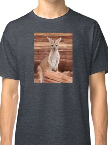"""Euro ~ """"Who's looking at who"""" Classic T-Shirt"""