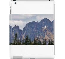 North Cascades iPad Case/Skin