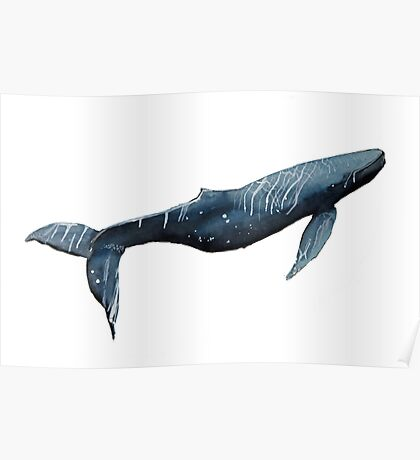 Whale oh Whale Poster
