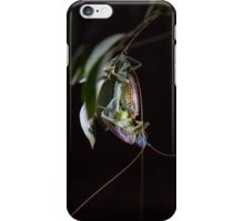 Mating Crickets iPhone Case/Skin