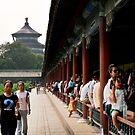 Temple of Heaven, Beijing by Nicholas Coates
