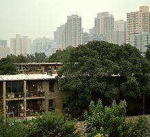 Xi'an, China by Nick Coates