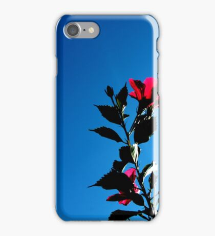 Red Hibiscus Reaching for Sunlight iPhone Case/Skin