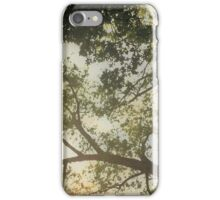 Sunlit Tree iPhone Case/Skin