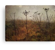 Along the Hedgerows Canvas Print