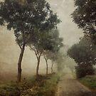 Towards Hellington by Sarah Jarrett