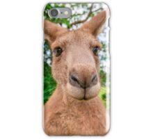 Big Red Kangaroo iPhone Case/Skin