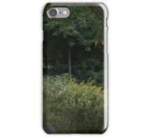 Appalachian Trail iPhone Case/Skin
