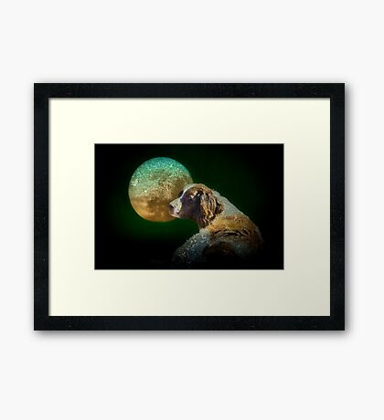 Too tired to howl at the moon Framed Print
