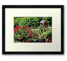Pots of Colour Framed Print