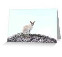 The Best Vantage Point Greeting Card