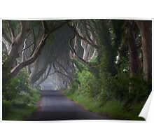 Dark Hedges  Game of Thrones  Co Antrim  Northern Ireland Poster