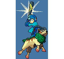 Go-Goat and Mega Man Photographic Print